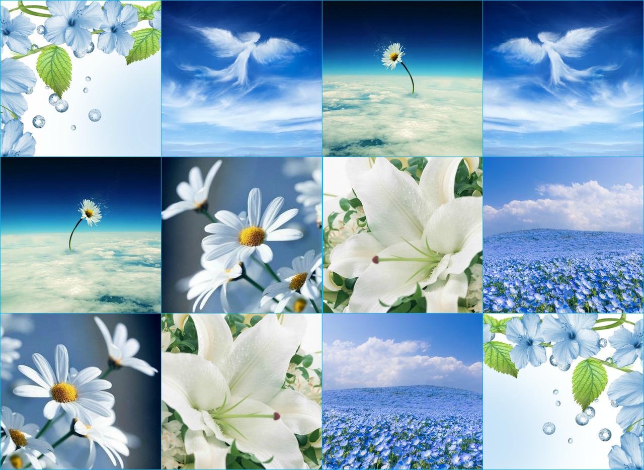 Image result for фото И ты живи, в себе рождая Стремление творить мечту, Любовь Творца в ней отражая, Его деяний красоту.
