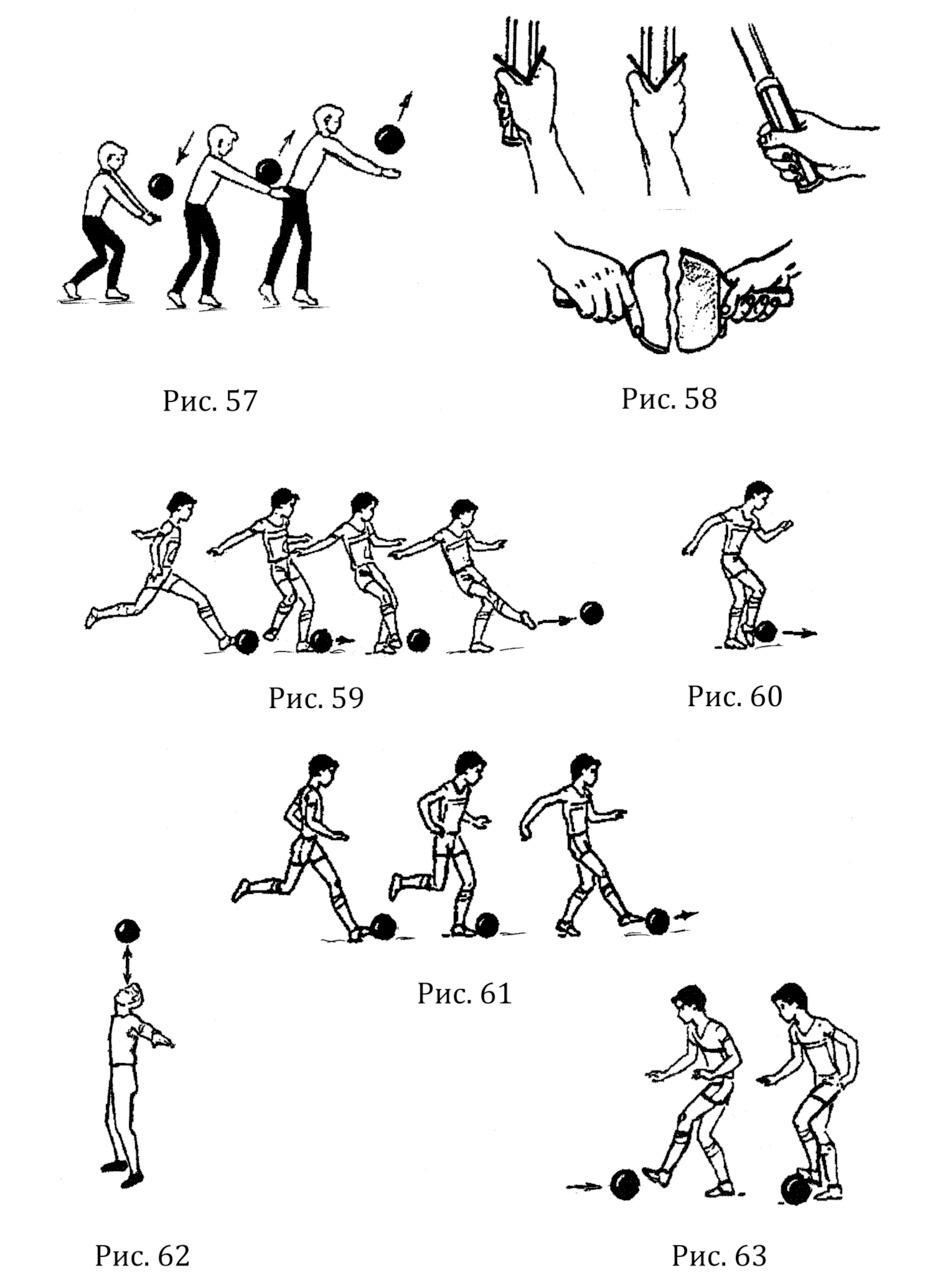 Скачать книгу глейберман упражнения с набивным мячом