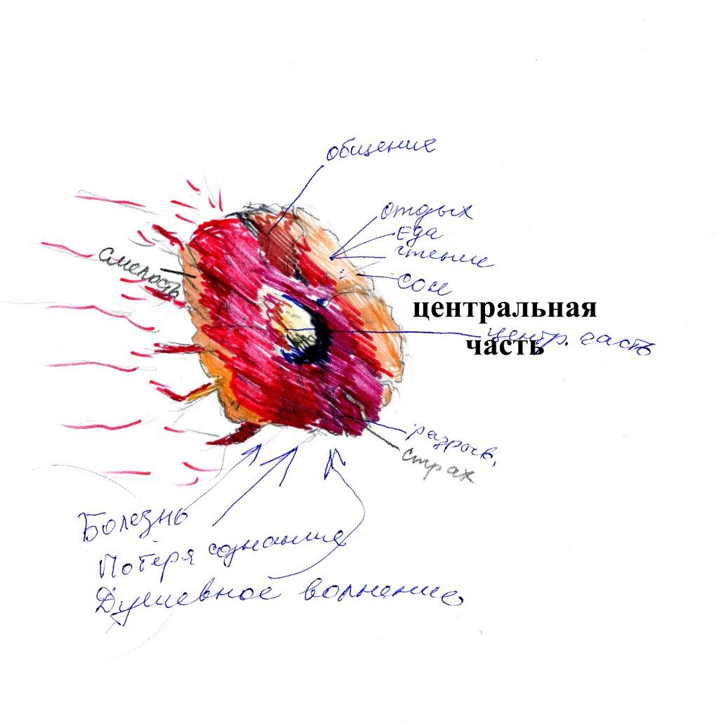 б у книга от симптома к диагнозу руководство для врачей